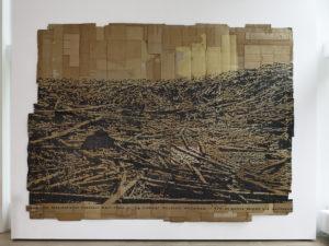 Andrea Bowers, I Am Nature, 2013